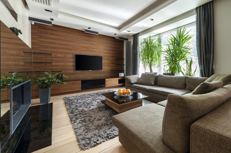 Дизайн гостиной стена с телевизором фото
