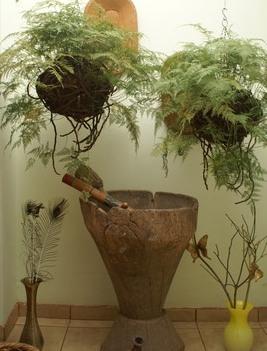 По которым размещают растения в доме