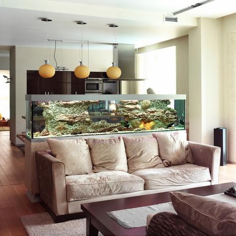 кухня, совмещенная с гостиной: зонирование