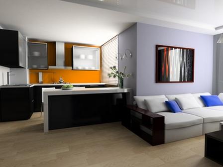 Кухня, совмещенная с гостиной: плюсы, минусы, приемы зонирования, Домфронт