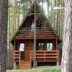 одинокий дом в лесу
