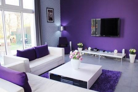 фиолетовый цвет в гостиной