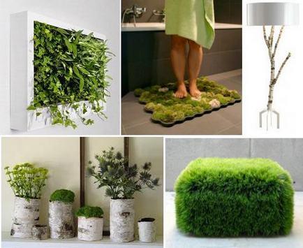 ecos38 Как оформить квартиру в эко стиле Фото