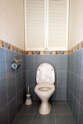 комбинирование настенной плитки в интерьере туалета