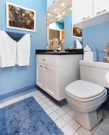 крашеные стены в интерьере ванной и туалета